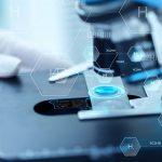 UCN ejecuta proyecto para potenciar capacidades de innovación a nivel institucional